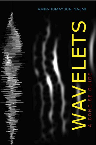 9781421404950: Wavelets: A Concise Guide