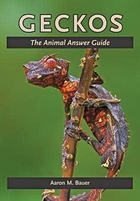 9781421408521: Geckos: The Animal Answer Guide