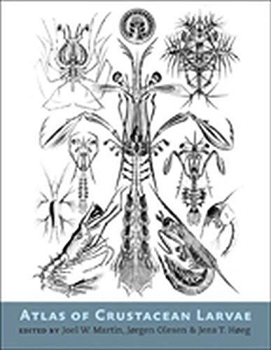 9781421411972: Atlas of Crustacean Larvae