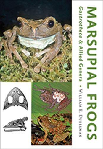 9781421416755: Marsupial Frogs: Gastrotheca and Allied Genera