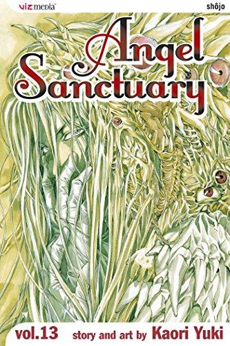 9781421503899: Angel Sanctuary, Vol. 13