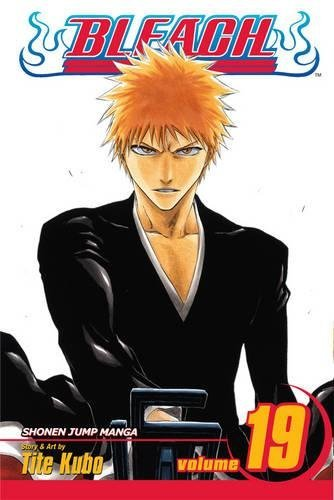 Bleach 19 : The Black Moon Rising