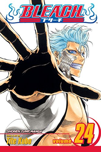 Bleach, Volume 24 (v. 24)