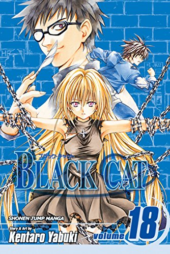 Black Cat Volume 18 (Black Cat (Viz)): Kentaro Yabuki