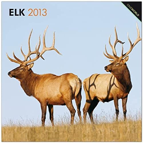 9781421600758: Elk 2013 Square 12X12 Wall Calendar (One World) (Multilingual Edition)