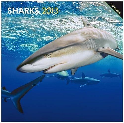 9781421600956: Sharks Wall Calendar 2013