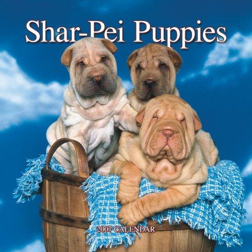 9781421608297: Shar-pei Puppies 2007 Mini Calendar