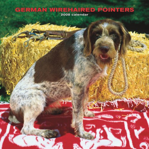 9781421623221: German Wirehaired Pointers 2008 Square Wall