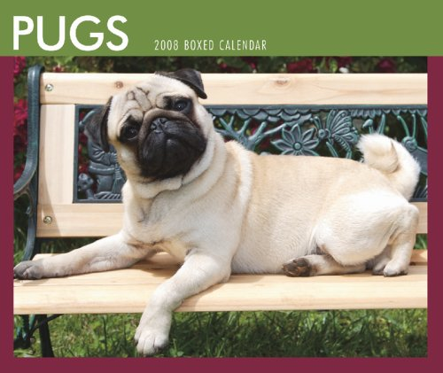 9781421624105: Pugs 2008 Boxed: Day to Day