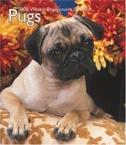Pugs 2008 Hardcover Weekly Engagement Calendar: BrownTrout Publishers