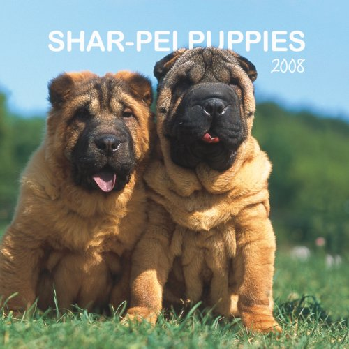 9781421624419: Shar-Pei Puppies 2008 Mini Wall Calendar (German, French, Spanish and English Edition)
