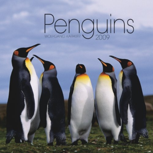 9781421634654: Penguins 2009 Square Wall Calendar (Multilingual Edition)