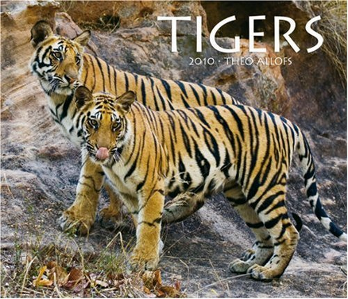 Tigers 2010 Deluxe Wall: BrownTrout Publishers Inc
