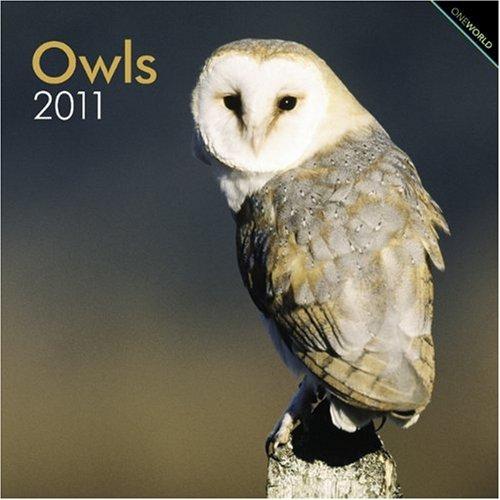 9781421661964: Owls 2011 Square 12X12 Wall Calendar