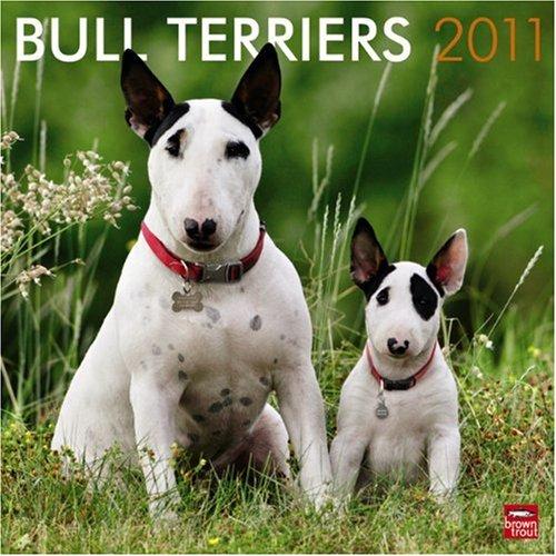 9781421662794: Bull Terriers 2011