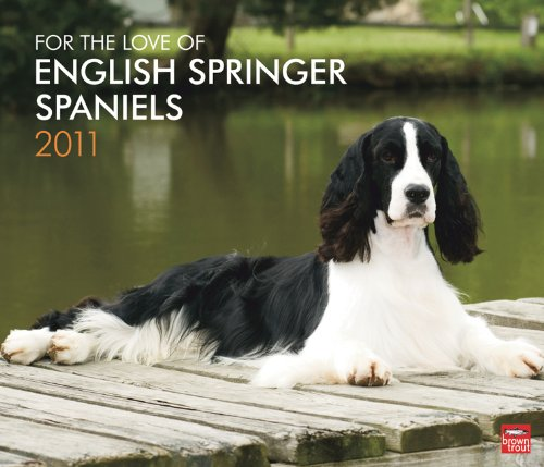 English Springer Spaniels, For the Love of 2011