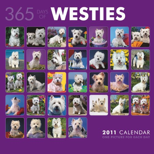 West Highland White Terriers 365 Days 2011 SQR (Multilingual Edition): BrownTrout Publishers Inc