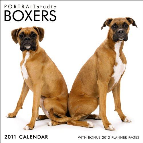 9781421670720: Boxers 2011 (Studio)