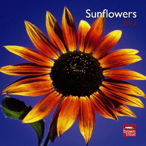 Sunflowers 2012 7X7 Mini Wall Calendar