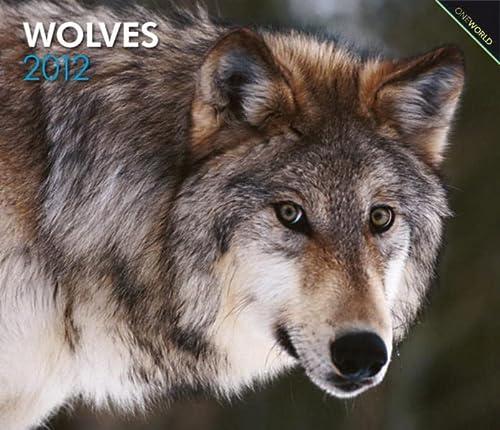 9781421675695: Wolves 2012 Deluxe Wall Calendar