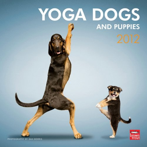 9781421676180: Yoga Dogs & Yoga Puppies 2012 Square 12x12 Wall Calendar