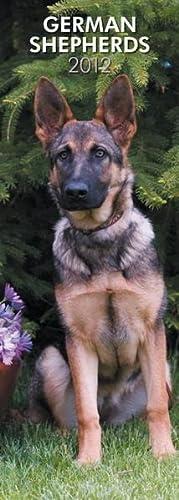 9781421677682: German Shepherds 2012 Slimline Calendar