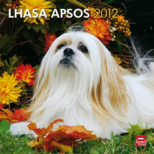 9781421678214: Lhasa Apsos 2012 Square 12X12 Wall Calendar (Multilingual Edition)