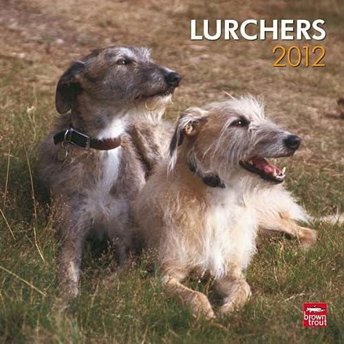 9781421678221: Lurchers 2012