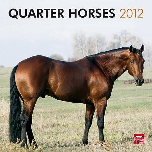 9781421679433: Quarter Horses