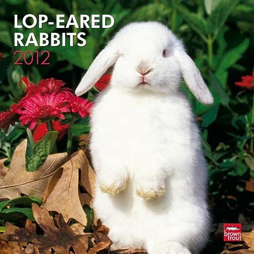 9781421686745: Lop-Eared Rabbits 2012 Square 12X12 Wall Calendar