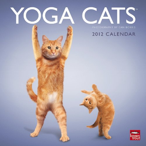 9781421686974: Yoga Cats & Yoga Kittens 2012 Square 12X12 Wall Calendar (Multilingual Edition)
