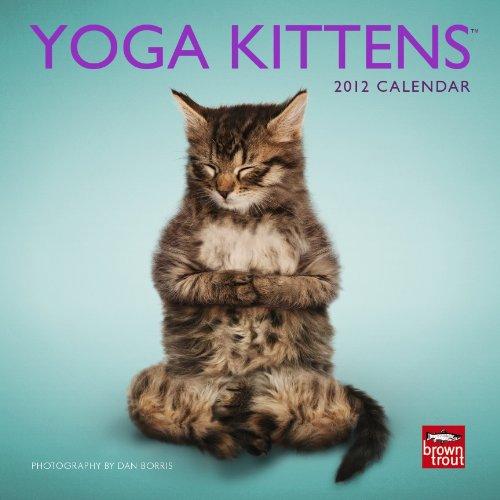 9781421690230: Yoga Kittens 2012 Mini 7x7 Calendar