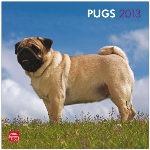 Pugs 2013 Square 12X12 Wall Calendar (Multilingual Edition): BrownTrout Publishers