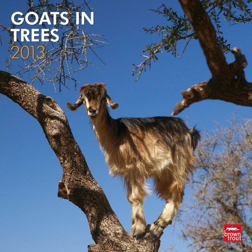 9781421699240: Goats In Trees 2013 Wall