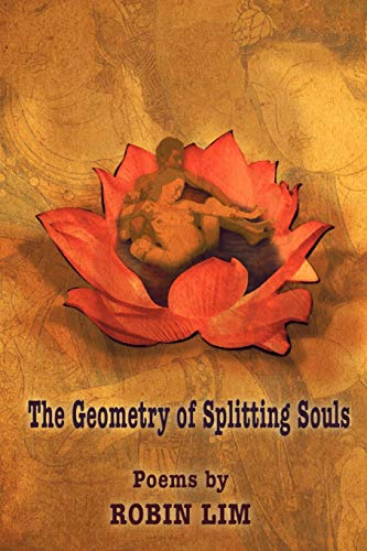 9781421886343: THE GEOMETRY OF SPLITTING SOULS