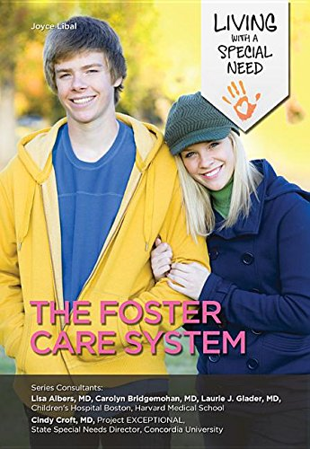 The Foster Care System (Hardcover): Joyce Libal