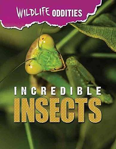 Incredible Insects (Wildlife Oddities): Mason Crest