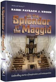 9781422613238: In the Splendor of the Maggid: Enthralling stories of inspiration and introspection