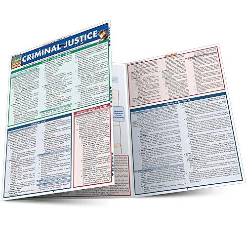 9781423203056: Criminal Justice (Quick Study Academic)
