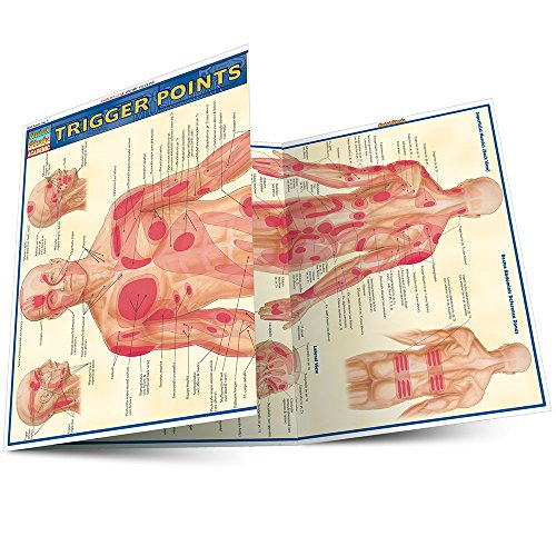 Trigger Points, Laminated Guide: BarCharts, Inc.