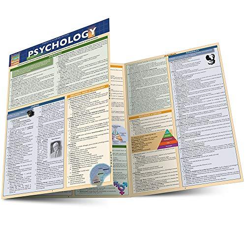 Psychology (Qucik Study): Lyngzeidetson, Albert E.