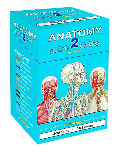 9781423232469: Anatomy 2 Flash Cards