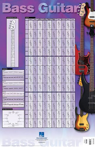 9781423405511: Bass Guitar Poster: 23 Inch. X 35 Inch. Poster