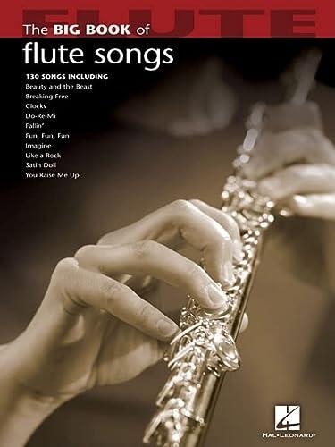 9781423426639: The Big Book Of Flute Songs. Flute Solo Book: Noten für Flöte (Big Book (Hal Leonard))