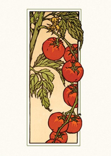 9781423606772: Cherry Tomato: Boxed Set of 6 Cards