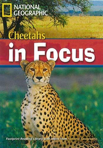 9781424012107: Cheetahs in Focus (Footprint Reading Library)