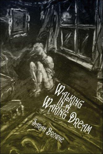 9781424172078: Walking in a Waking Dream