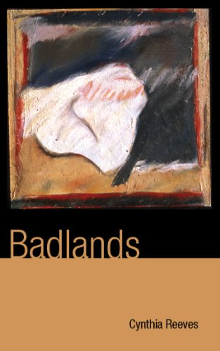 9781424331093: Badlands