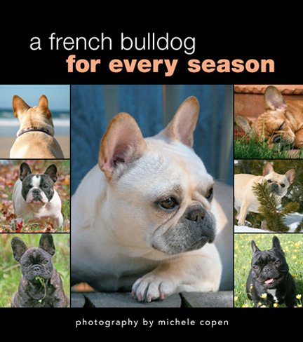A French Bulldog for Every Season: Michele Copen