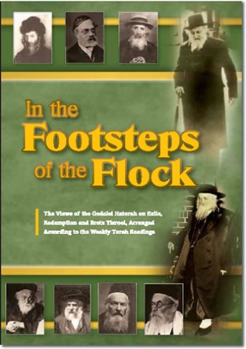 9781424338429: In the Footsteps of the Flock